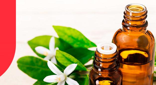 Farmácia fitoterápica: Como explorar melhor esse nicho?