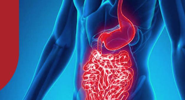 Prebióticos e probióticos: por que indicá-los na sua farmácia de manipulação?